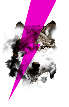 wolf rocks