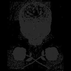 skull_n_roses