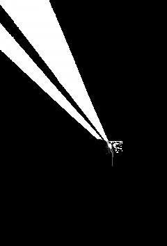 laser crow