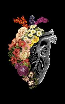 flower heart spring