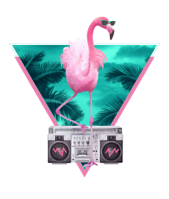 miami flamingo