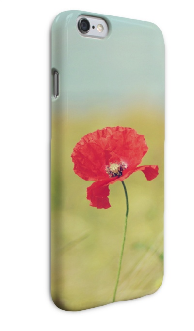 iP6 blume links vorne 2